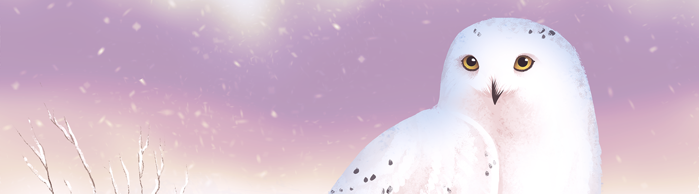 Switch banner to use Snowy Owl